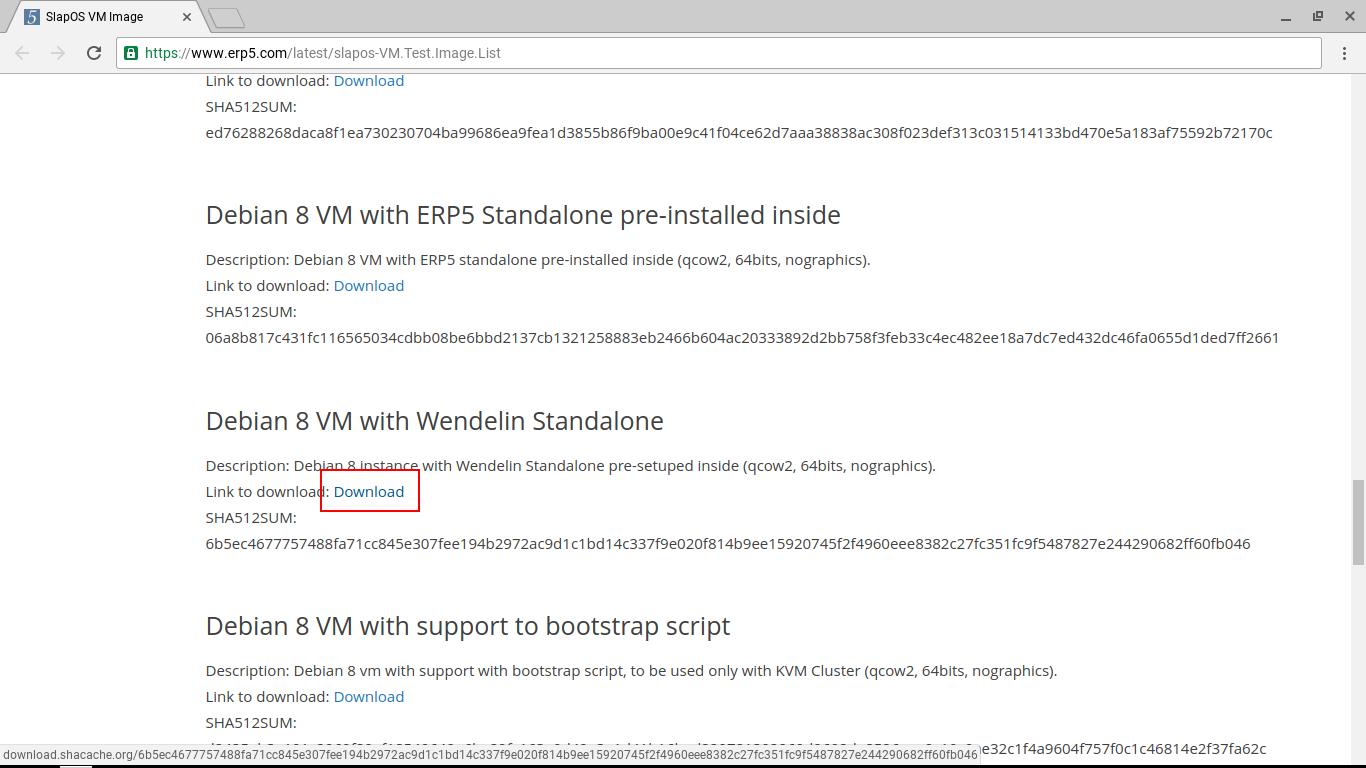 Downloading the Wendelin VM